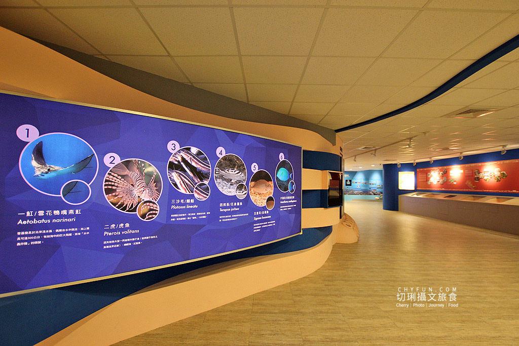 20190611005135_72 澎湖|澎湖海洋資源館,在地豐厚多元資訊的特色文化館