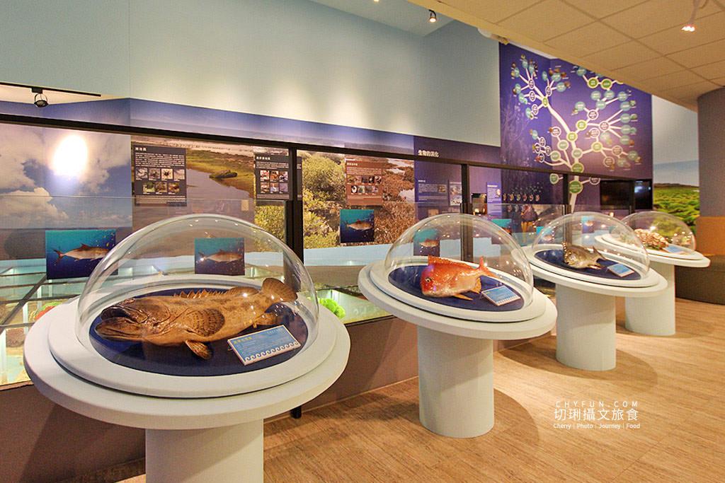 20190611005139_8 澎湖|澎湖海洋資源館,在地豐厚多元資訊的特色文化館