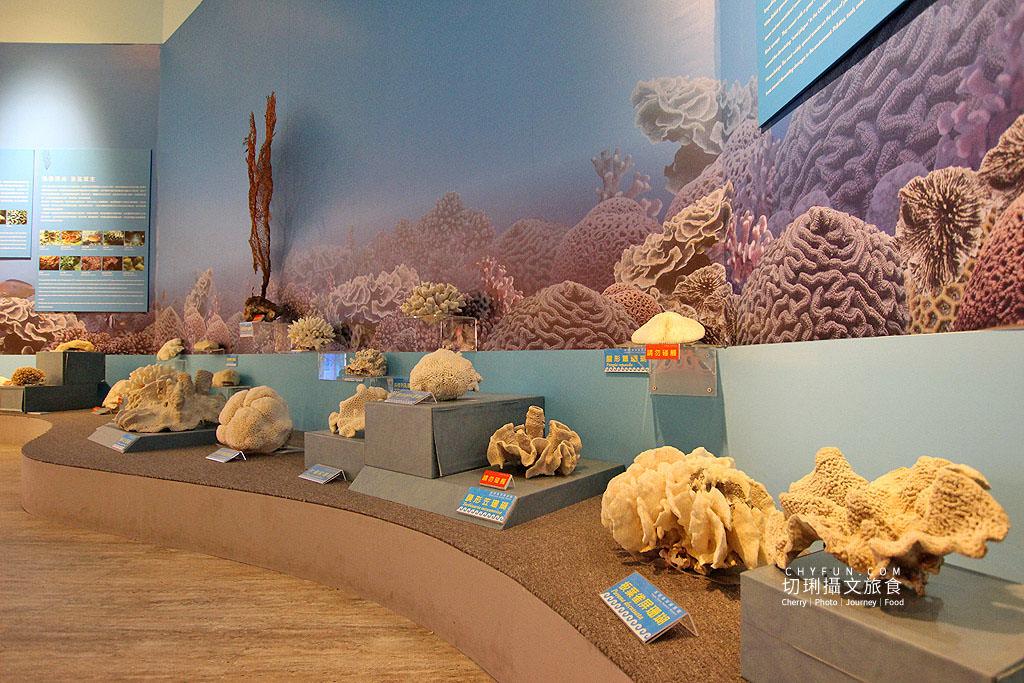 20190611005141_40 澎湖|澎湖海洋資源館,在地豐厚多元資訊的特色文化館