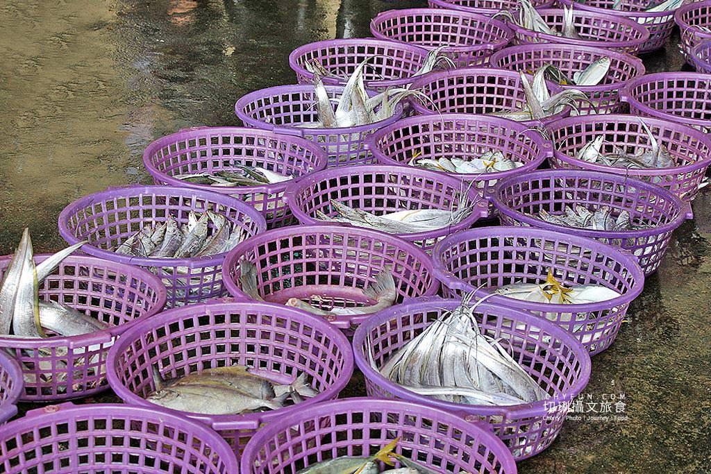 20190916201313_89 苗栗|龍鳳漁港看現撈體驗競拍魚貨之精彩,直擊慢魚運動的一環