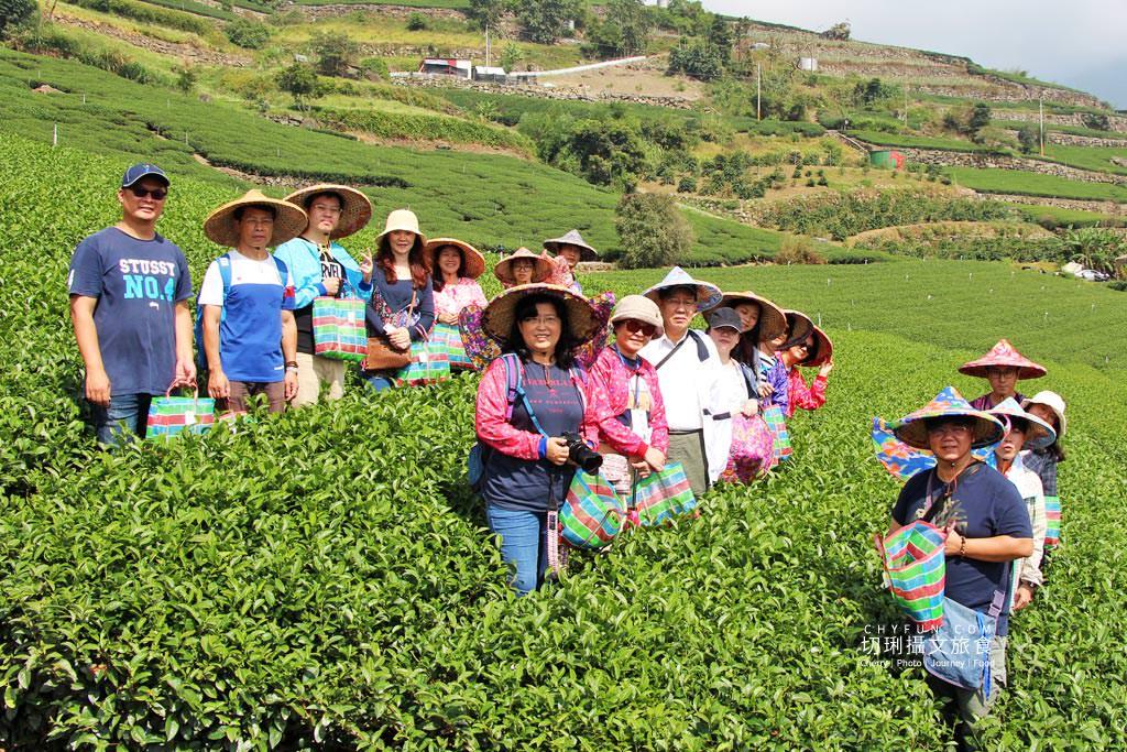 20191115080808_22 嘉義|阿里山石棹茶旅識茶道,喝一口好茶不簡單從採茶到擺席體驗茶香時節