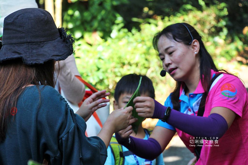 20191210020359_61 彰化|社頭一日遊清水樂活小旅行,自然生態與鐵道迷必朝聖之地