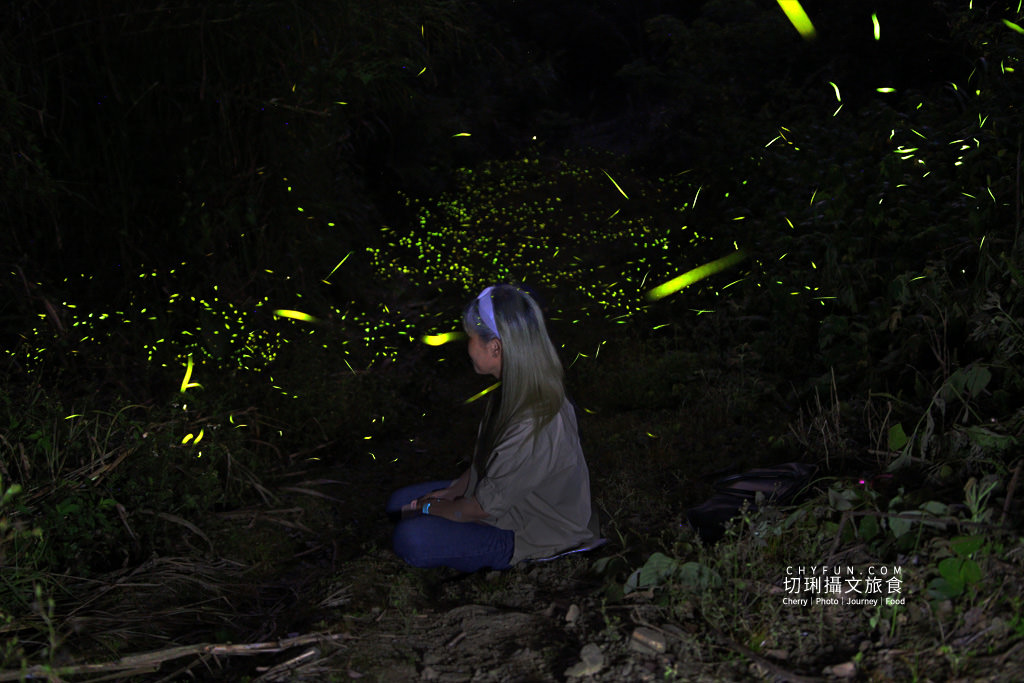 IMG_9845 雲林|草嶺遇見螢火蟲,烘豆彩繪品味在地伙食豐富石壁半日遊